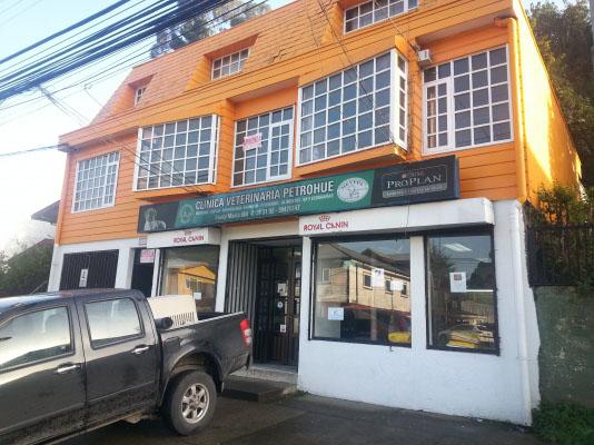Veterinario en Puerto Montt