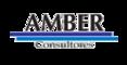 AMBER Consultores
