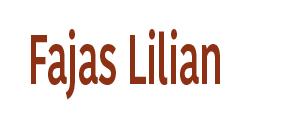 Fajas Lilian