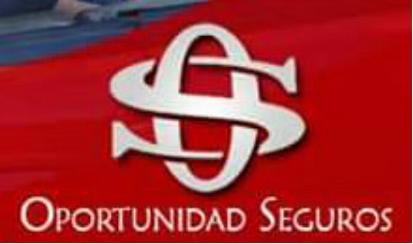 OPORTUNIDAD SEGUROS