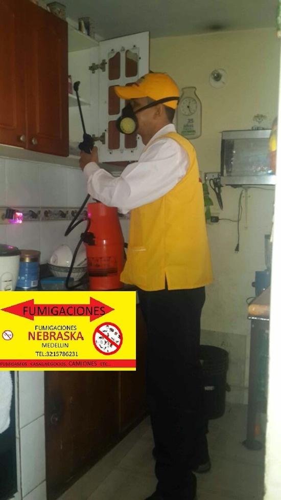 Control de plagas en Itagüí