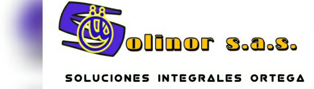 Solinor s.a.s