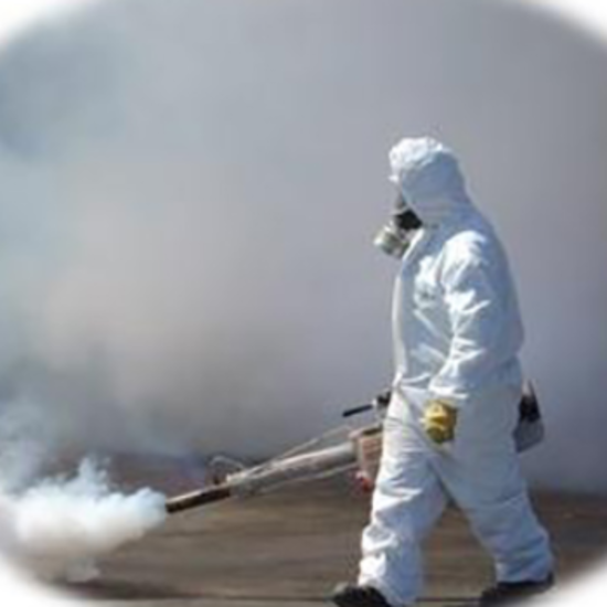 Control de plagas en Rancagua