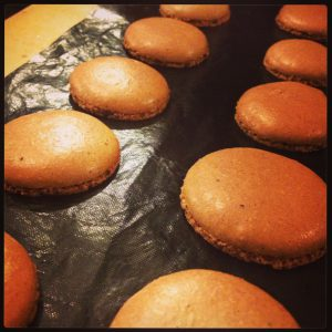 macarons resting after baking