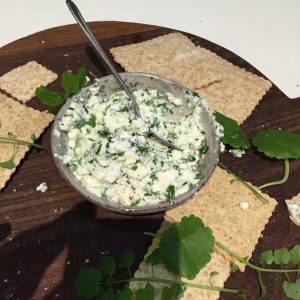 Some cottage cheese and herbs made this morning by Darina