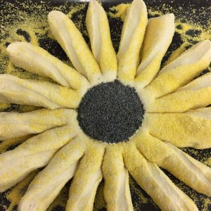 The sunflower prior to baking