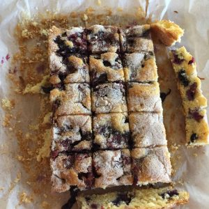 Blueberry & Cinnamon Squares