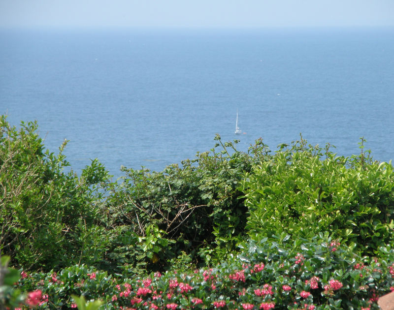 Seaviews from Derowen, a coastal, self-catering holiday house in Port Isaac, Cornwall