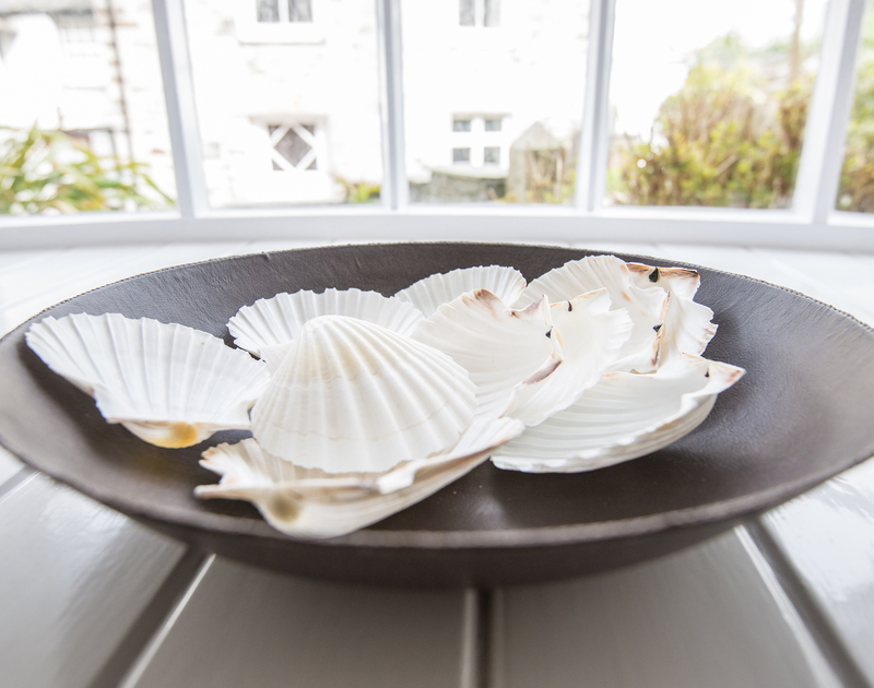 Feature bowl of shells in the window of Dolphin Cottage, holiday cottage in Port Isaac, North Cornwall