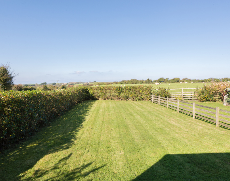 View of the local wildlife from Puffin Cottage, a self catering holiday cottage in Rock, Cornwall