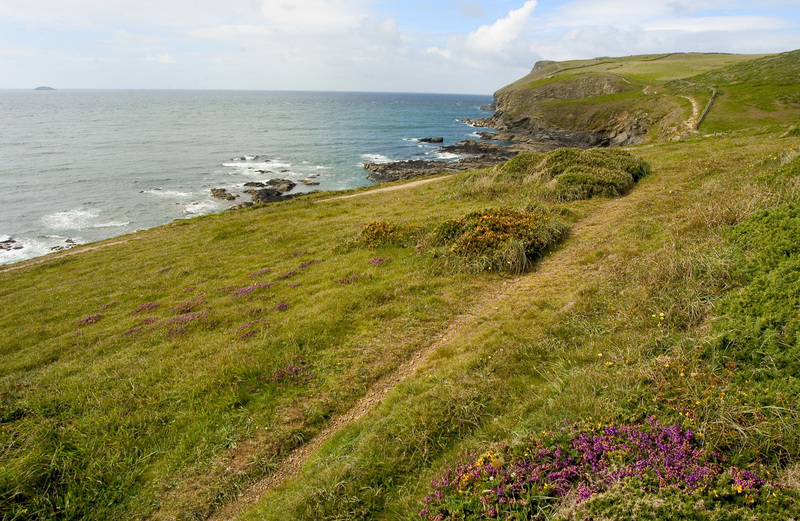 The stunning South West Coast Path from Polzeath towards Pentire Point
