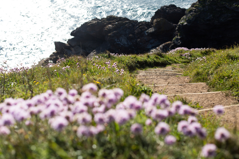 The walk from Port Isaac to Port Quin in North Cornwall involves a lot of steep ascents and descents