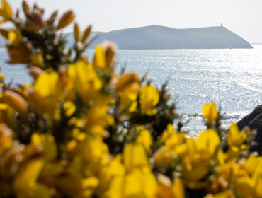 Enjoy stunning scenery, beaches and coastal walks in North Cornwall over the early May bank holiday