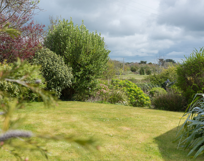 Secluded gardens at Penny Liggan tucked away on the edge of the golf course close to the waterfront at Rock,North Cornwall.