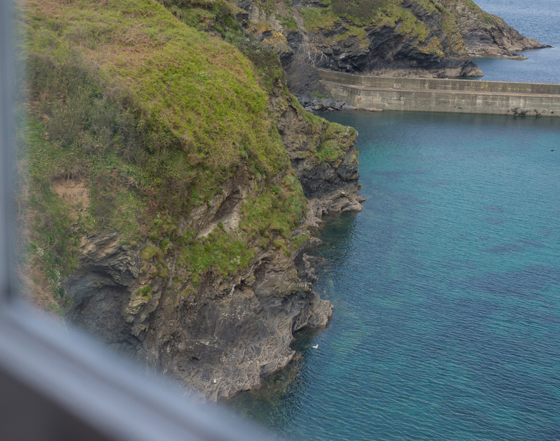 Observe sea birds nesting in the cliffs near Northcliffe, self-catering holiday rental in Port Isaac