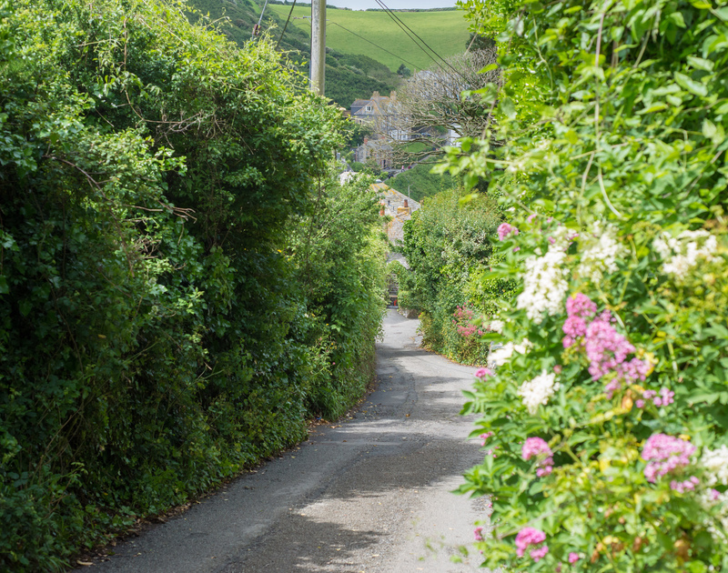 The quintessential Cornish country lane leading steeply downhill towards the harbour at Port Isaac from First and Last, a self catering holiday cottage to rent in North Cornwall.