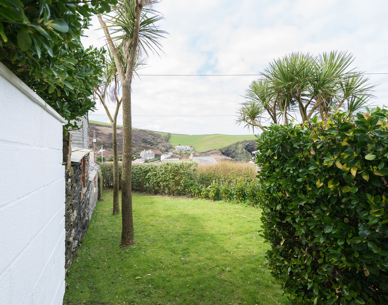 Cornish palm trees in the sheltered yet coastal garden at Tamarisk a south facing, holiday bungalow to rent in Port Isaac, North Cornwall.