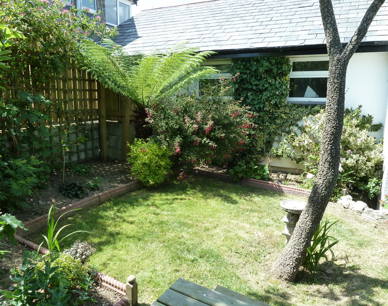 The pretty suntrap garden with mature plants in the borders at Fairholme, a family holiday house to rent in Port Isaac.
