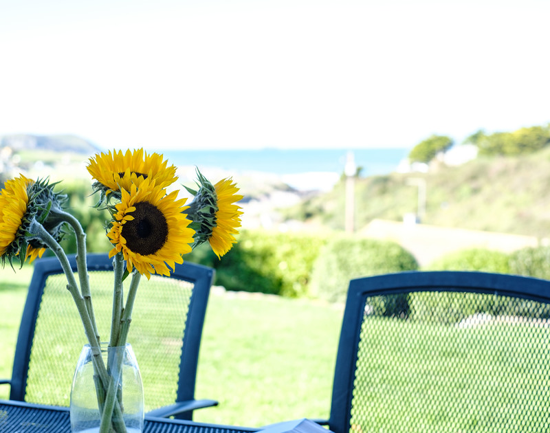 Seasonal sunflowers on the patio table in the garden with the Atlantic Ocean beyond at self catering holiday house to rent Westpoint in Trenant Close Polzeath.