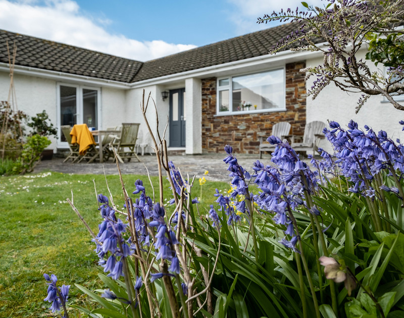 Springtime in the beautiful garden at Corriana, a self catering holiday rental in Rock, North Cornwall