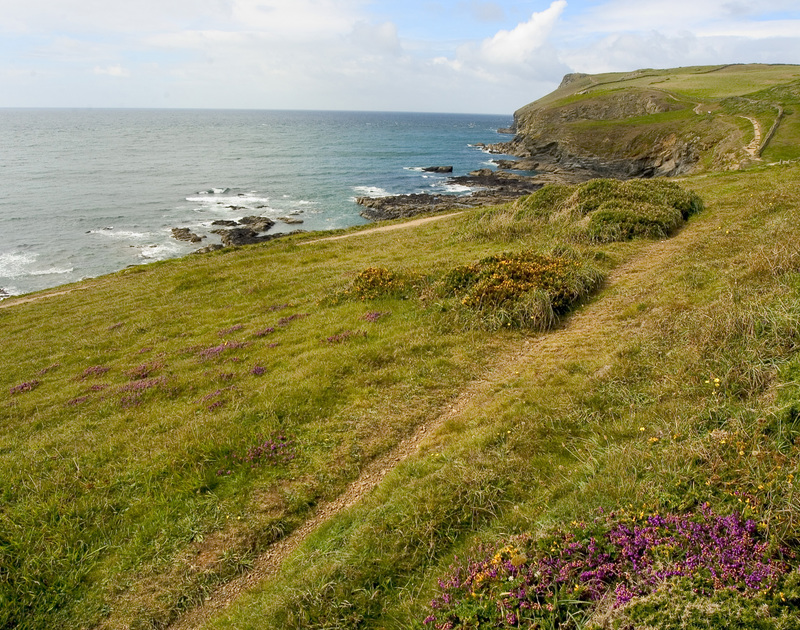 The coastal paths at Polzeath in North Cornwall are lovely to stroll along.