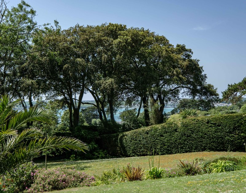 The mature gardens and views of the Camel Estuary from Rock Hill, a holiday rental in Rock, North Cornwall.