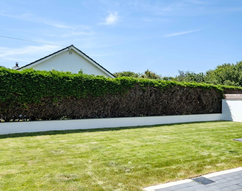 The large enclosed garden at Artemis self catering holiday home in Rock, North Cornwall.