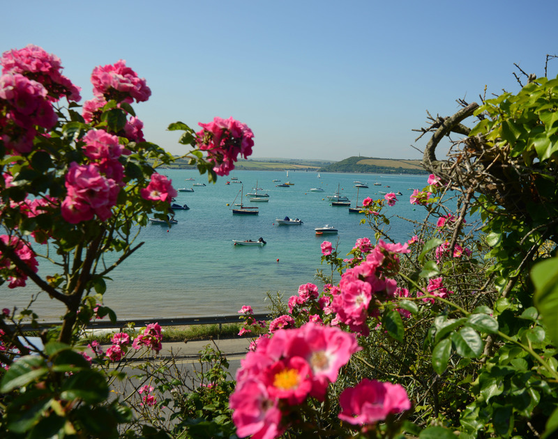 The view of the Camel Estuary, a few minutes from Artemis self catering pet friendly holiday home in North Cornwall.