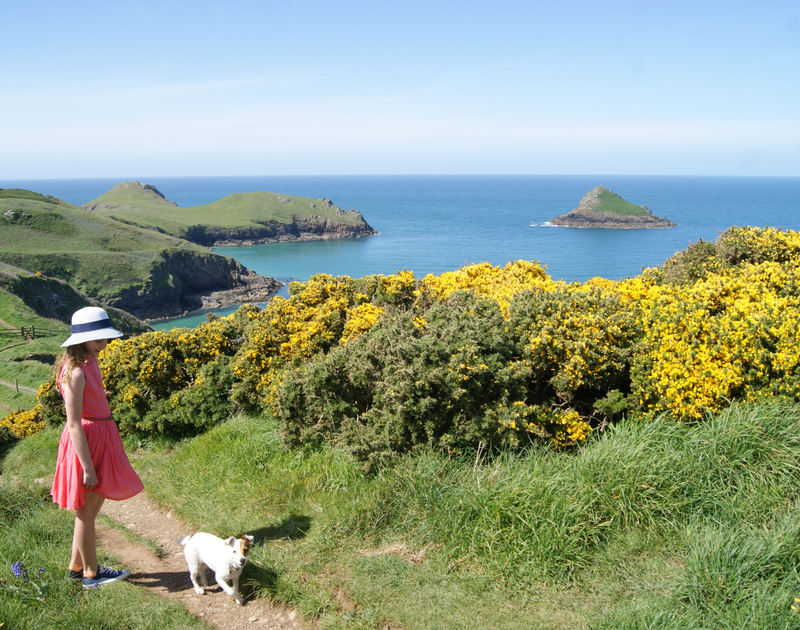 The stunning coastal paths surrounding 3 The Sands self catering holiday home pet friendly in Polzeath North Cornwall.