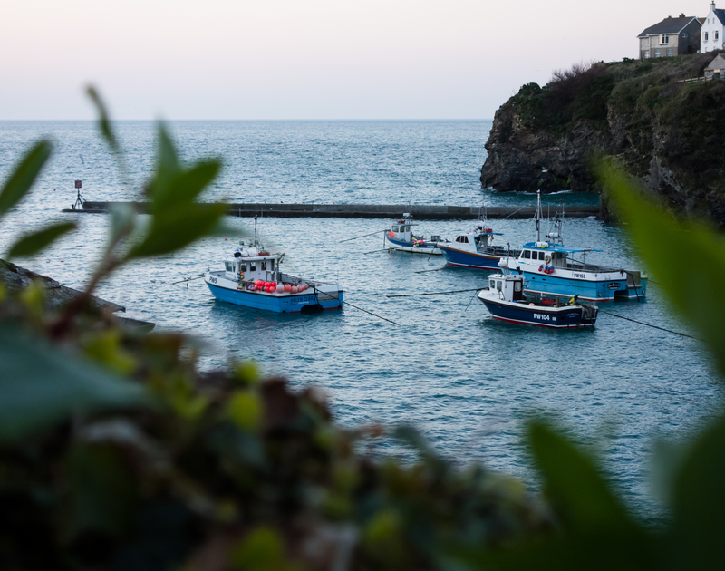 Watch the boats bobbing on the water in Port Isaac at Albany self catering holiday home in Port Isaac, North Cornwall.