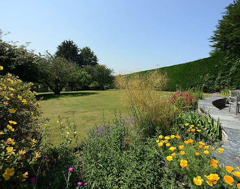The mature plants,trees and flowering shrubs in the garden at Tregillan, a self catering, holiday house to rent in Rock, Cornwall.