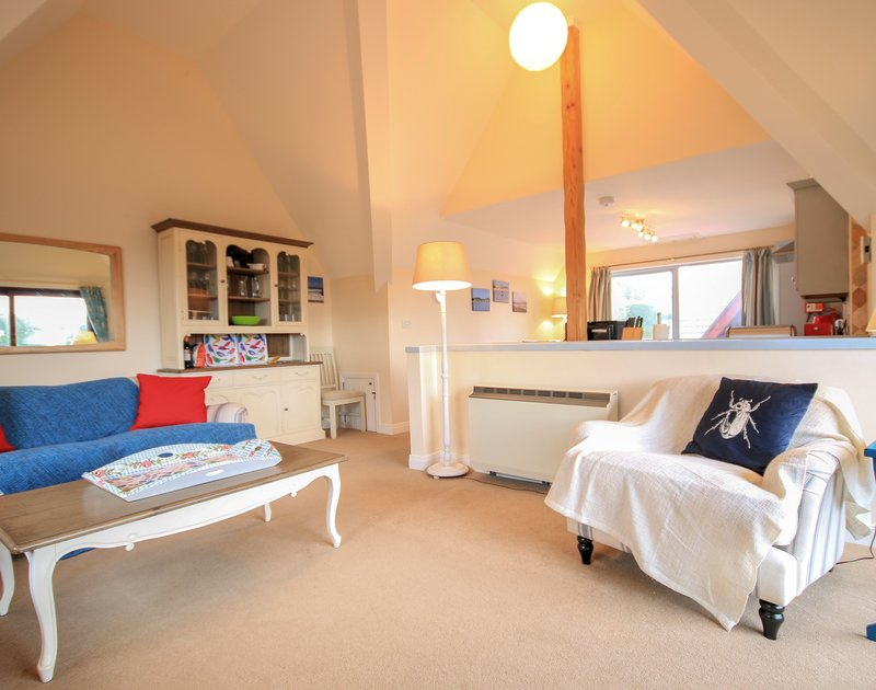 The open plan lounge/kitchen/dining room with vaulted ceiling in spacious Hatchlands, a self catering holiday house in Rock on the North Cornish coast.