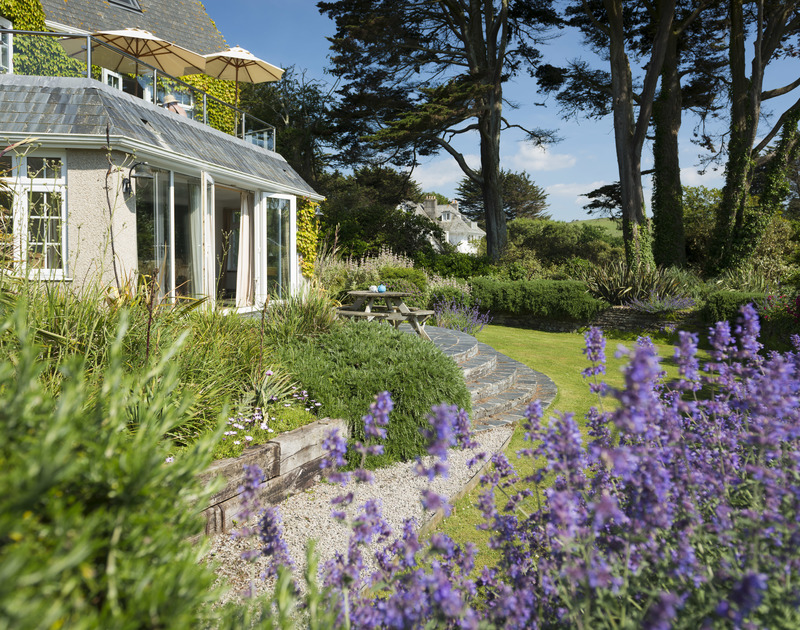 Colourful and mature garden borders at Bodare 1, a holiday rental at Daymer Bay, Cornwall