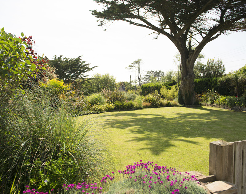 Mature planting in the large communal gardens of Bodare 3, a holiday apartment at Daymer Bay, Cornwall
