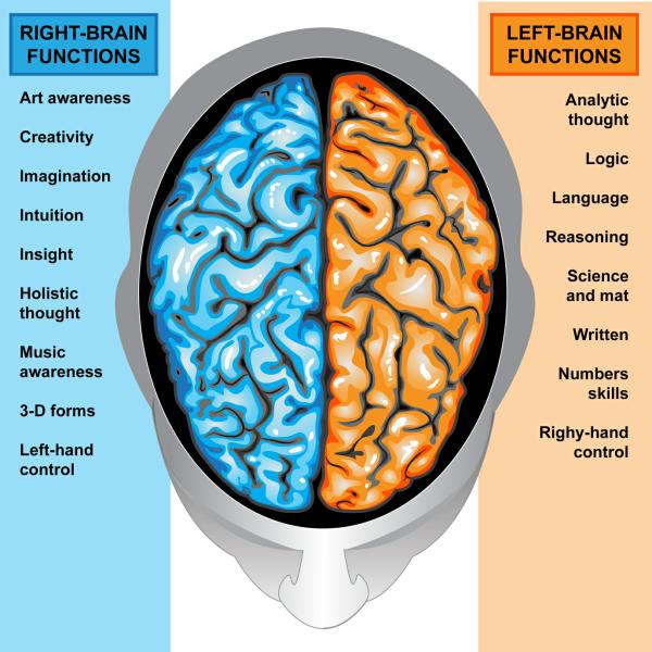 Иллюстрация к статье: 12 советов оптимизации конверсии на основе человеческой психологии и поведенческой экономики