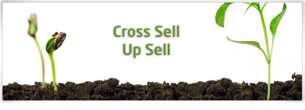 cross-sell