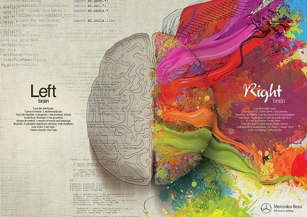 Иллюстрация к статье: Каким полушарием думают маркетологи?