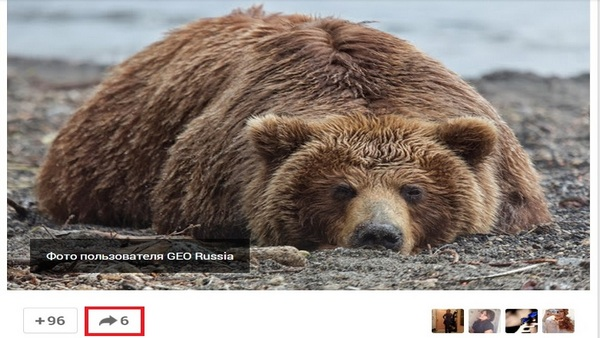 репостинг Google +
