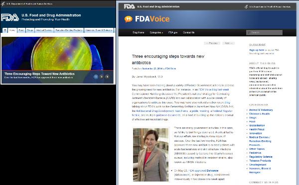 FDA, US Food and Drug Administration