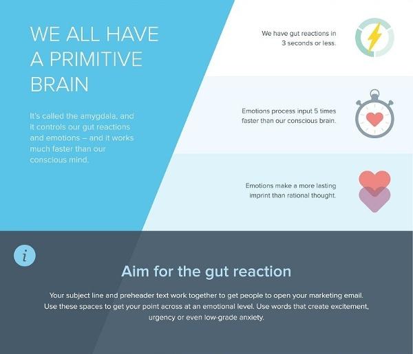 Иллюстрация к статье: Секреты нейрофизиологии для интернет-маркетолога