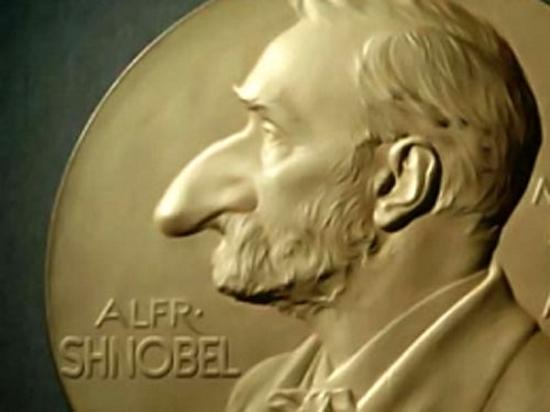 Шнобелевская премия или Программа, определяющая, когда «печатает» кошка
