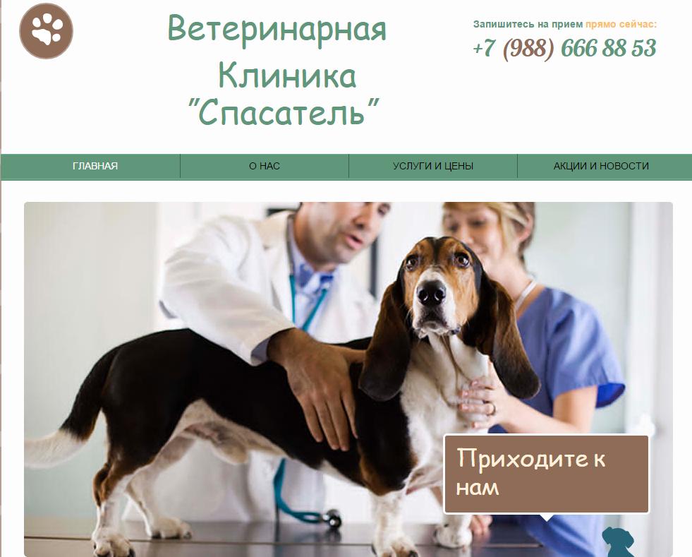 термобелье активно цены в ветеринарных клиниках в нижнем новгороде мериносов
