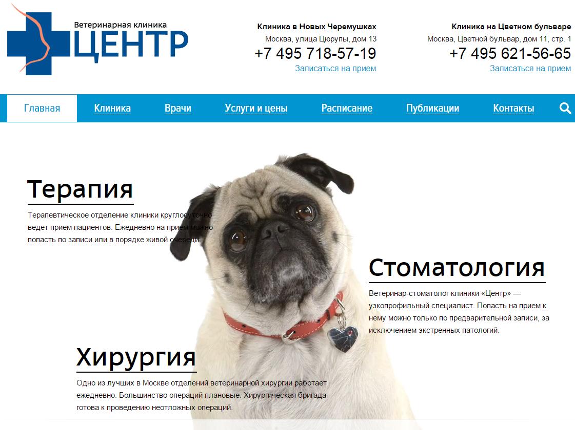 Иллюстрация к статье: Шаблоны по бизнес-нишам: ветеринарные услуги