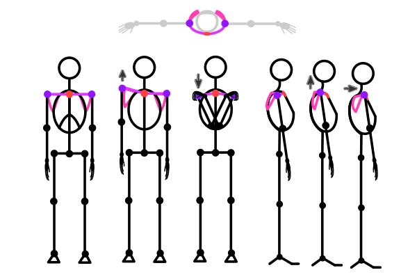 draw-stickman-5-chest-3-2