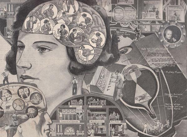 Иллюстрация к статье: Нейромаркетинг: 13 психологических советов по воздействию на потребителя
