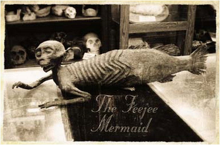 Fiji mermaid