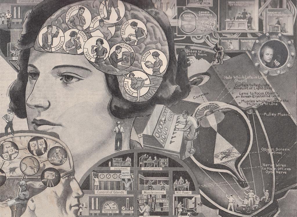 Иллюстрация к статье: Как использовать принципы психологии в оптимизации конверсии?