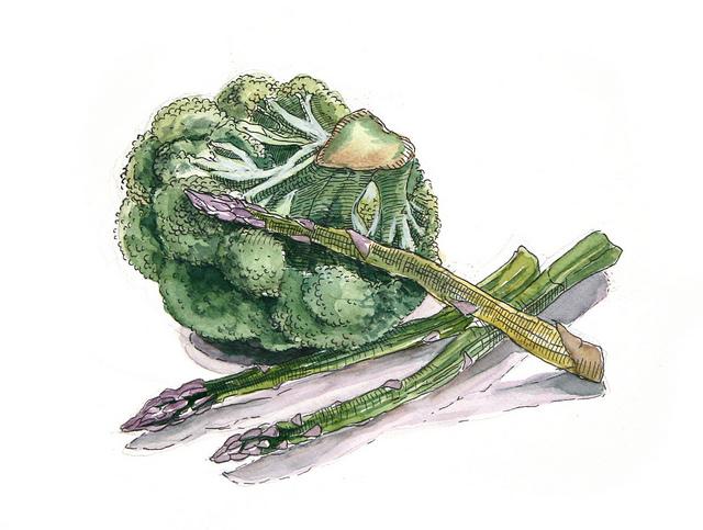 Иллюстрация к статье: Ненависть к брокколи, или Как формируются наши вкусовые пристрастия?