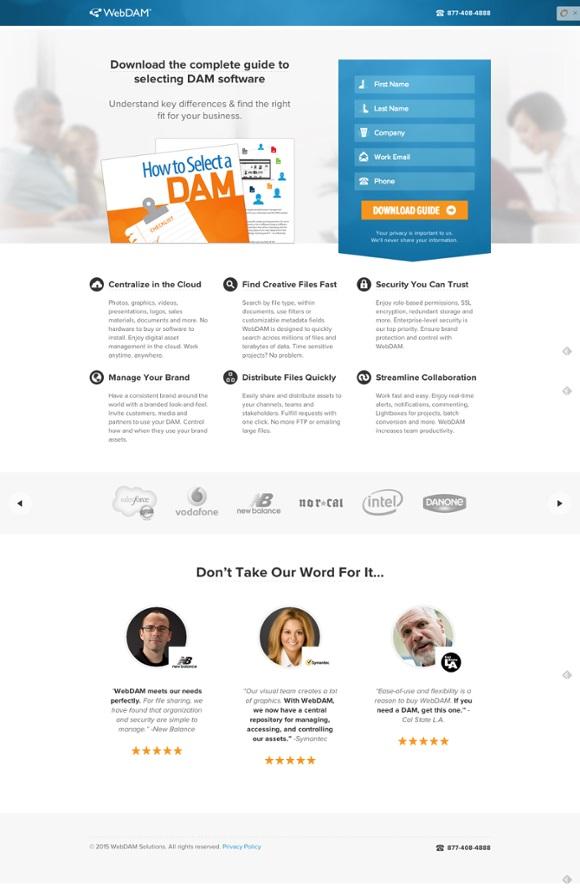 целевая страница WebDam