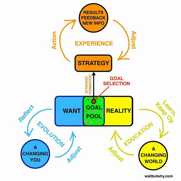 «Петля реальности», показанная желтыми стрелками, символизирует постоянное самообразование и поддержание «поля реальности» актуальным